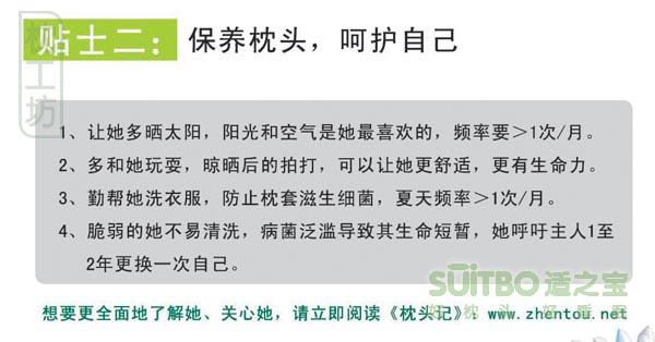 www.zhentou.com